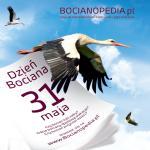 Bocianopedia.pl w prezencie od ENERGI na Dzień Bociana – 31 maja