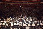 Orkiestra.jpg